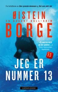 Jeg er nummer 13 (ebok) av Øistein Borge
