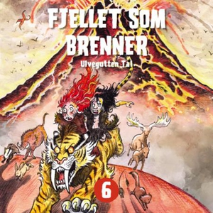 Fjellet som brenner (lydbok) av Tor Åge Bring