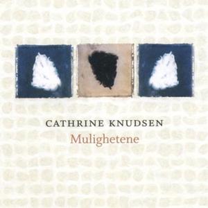 Mulighetene (lydbok) av Cathrine Knudsen