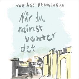 Når du minst venter det (lydbok) av Tor Åge B