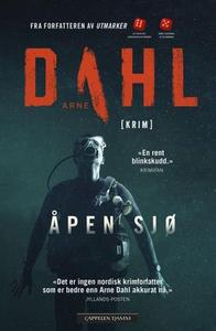 Åpen sjø (ebok) av Arne Dahl