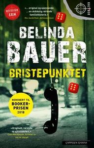 Bristepunktet (ebok) av Belinda Bauer