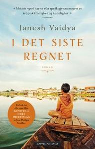 I det siste regnet (ebok) av Janesh Vaidya