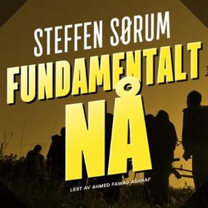 Fundamentalt nå (lydbok) av Steffen Sørum