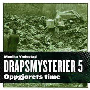 Oppgjørets time (lydbok) av Monika N. Yndesta