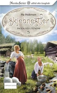 Ingen vei utenom (ebok) av Pia Pedersen