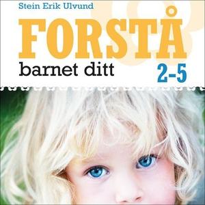Forstå barnet ditt (lydbok) av Stein Erik Ulv
