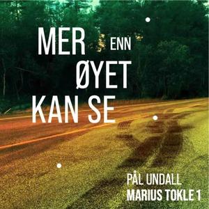 Mer enn øyet kan se (lydbok) av Pål Undall