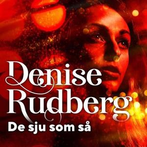 De sju som så (lydbok) av Denise Rudberg
