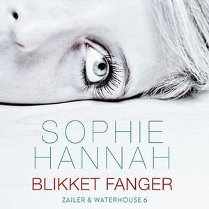 Blikket fanger (lydbok) av Sophie Hannah