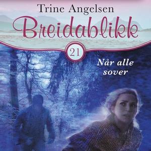 Når alle sover (lydbok) av Trine Angelsen