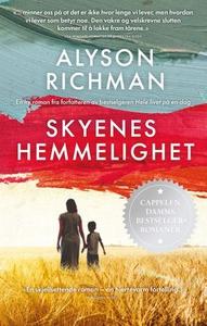 Skyenes hemmelighet (ebok) av Alyson Richman