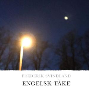 Engelsk tåke (lydbok) av Frederik Svindland
