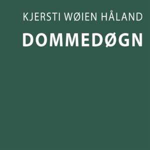 Dommedøgn (lydbok) av Kjersti Wøien Håland
