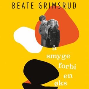 Å smyge forbi en øks (lydbok) av Beate Grimsr