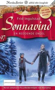En reddende engel (ebok) av Frid Ingulstad