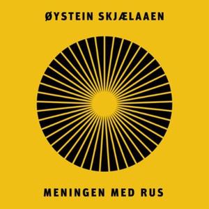 Meningen med rus (lydbok) av Øystein Skjælaae