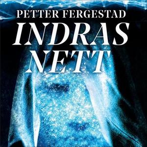 Indras nett (lydbok) av Petter Fergestad