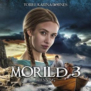 Brenning (lydbok) av Torill Karina Børnes