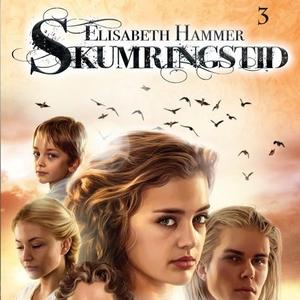 Stormskyer (lydbok) av Elisabeth Hammer