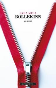 Bollekinn (ebok) av Sara Mesa