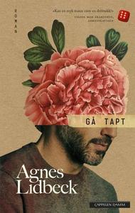 Gå tapt (ebok) av Agnes Lidbeck