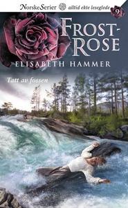 Tatt av fossen (ebok) av Elisabeth Hammer