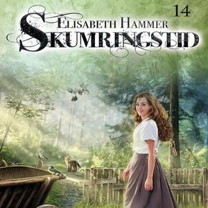 Mellom himmel og jord (lydbok) av Elisabeth H