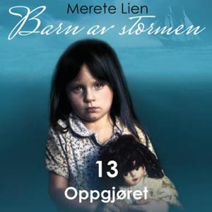 Oppgjøret (lydbok) av Merete Lien