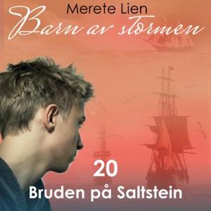 Bruden på Saltstein (lydbok) av Merete Lien