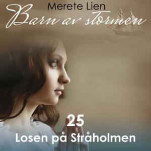 Losen på Stråholmen (lydbok) av Merete Lien