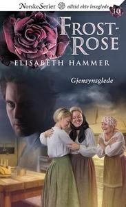 Gjensynsglede (ebok) av Elisabeth Hammer