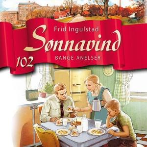 Bange anelser (lydbok) av Frid Ingulstad