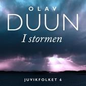 I stormen