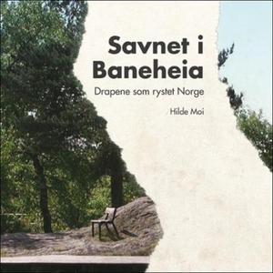 Savnet i Baneheia (lydbok) av Hilde Moi Østbø