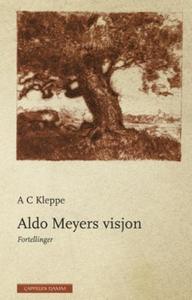 Aldo Meyers visjon (ebok) av A.C. Kleppe