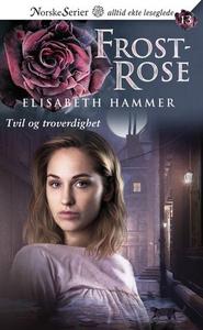 Tvil og troverdighet (ebok) av Elisabeth Hamm