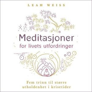 Meditasjoner for livets utfordringer (lydbok)