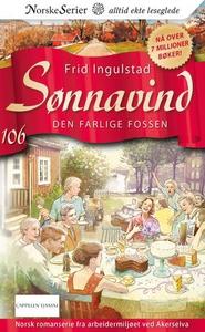 Den farlige fossen (ebok) av Frid Ingulstad