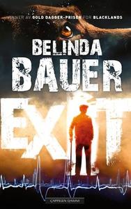 Exit (ebok) av Belinda Bauer