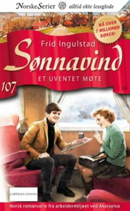 Et uventet møte (ebok) av Frid Ingulstad