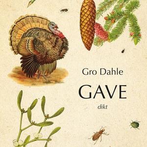 Gave (lydbok) av Gro Dahle