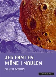 Jeg fant en måne i navlen (ebok) av Ninni Nyh