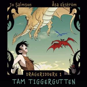Tam tiggergutten (lydbok) av Jo Salmson