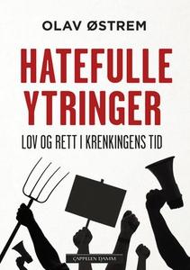 Hatefulle ytringer (ebok) av Olav Østrem