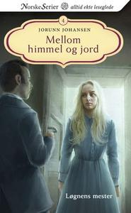 Løgnens mester (ebok) av Jorunn Johansen