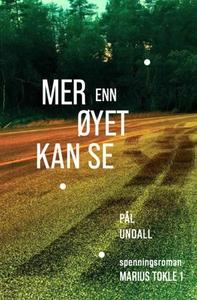 Mer enn øyet kan se (ebok) av Pål Undall