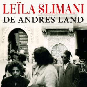 De andres land (lydbok) av Leïla Slimani