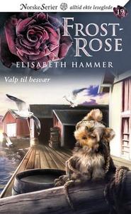 Valp til besvær (ebok) av Elisabeth Hammer