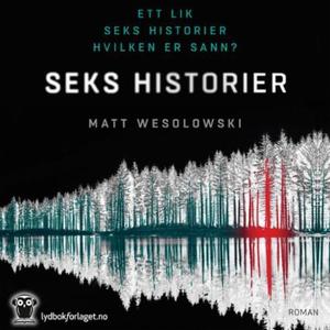 Seks historier (lydbok) av Matt Wesolowski